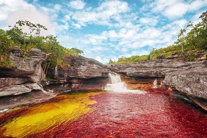 The river of 8 colors, Caño Cristales